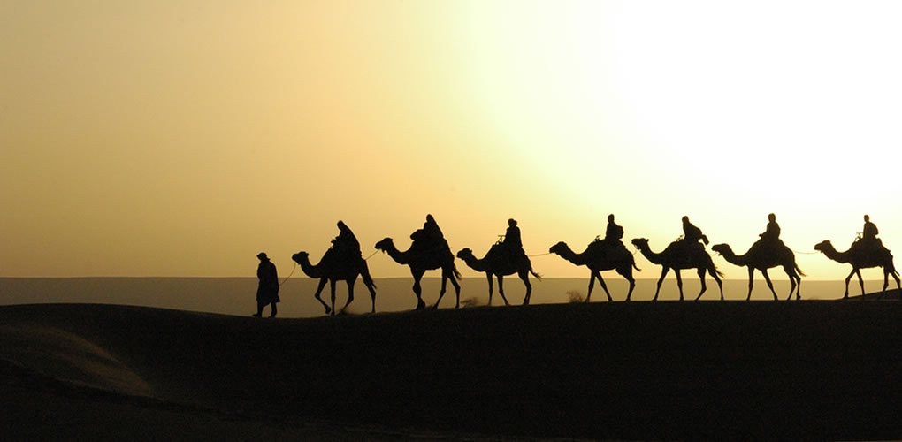 15 Day Holy Land Egypt, Jordan, and Israel Tour Event